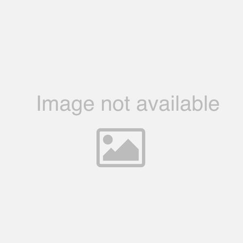 Fiberlock Iaq 6100 Mold Resistant Coating, Clear, Price Per Gallonl